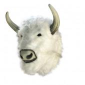 Weißer Büffelkopf