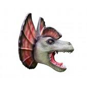 Dinosaurier BabyDilophosauruskopf