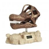 Dinosaurier Brachiosaurus auf Stein