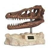 Dinosaurier Velociraptor auf Stein