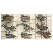 Dinosaurier Kopf Fossilien
