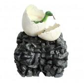 Anakonda schlüpft aus Ei auf Stein