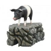 Schwein schwarzweiß stehend