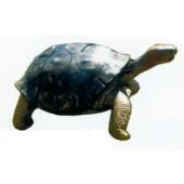lebensgroße Schildkröte mit Kopf nach oben