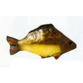 großer Karpfen Fisch
