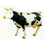 schwarz weiß gefleckte Kuh