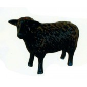 schwarzes Schaf klein