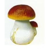 Pilze als Paar