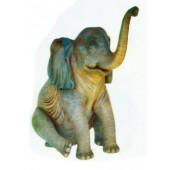 Elefant sitzend mit Rüssel oben