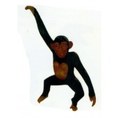 hängender Affe am Arm