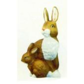 zwei braun weiße Hasen sitzend
