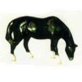 kleines schwarzes Pferd grasend