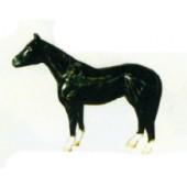 kleines schwarzes Pferd Kopf oben
