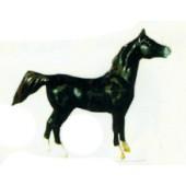 schwarzes kleines Pferd Kopf oben