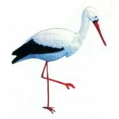 laufender Storch