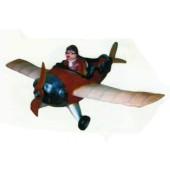 Flugzeug mit Pilot
