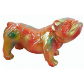 Bulldogge mit Farbspritzer