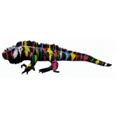 Leguan schwarz bunter Farbverlauf