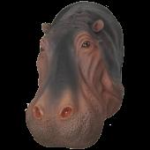 Nilpferdkopf