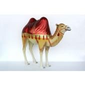 orientalisches Kamel mit rotem Tuch