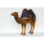 orientalisches Kamel mit dunkelrotem Tuch