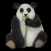 sitzender Pandabär mit Bambus