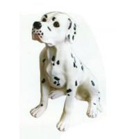 Dalmatiner sitzend