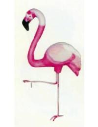 Flamingo stehend auf einem Bein