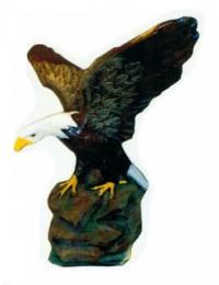 sitzender amerikanischer Weißkopfseeadler