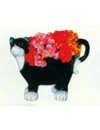 schwarz weiße Katze zum bepflanzen