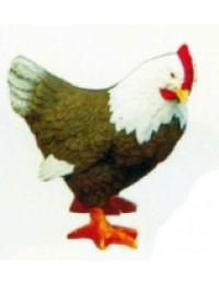 kleines braun weiß gefiedertes Huhn