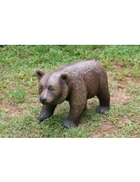 BabyBraunbär