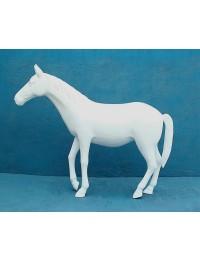 Weißes Pferd glänzend