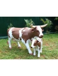 Braunweiße Kuh mit Baby