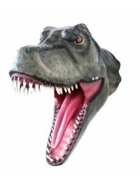 Dinosaurier Tyrannosauruskopf
