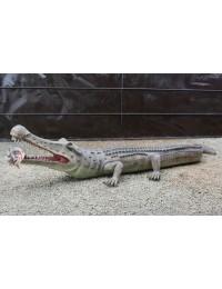 Dinosaurier Sarcosuchus