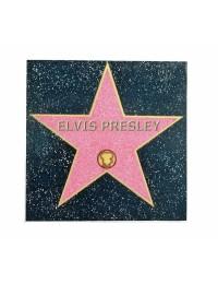 Hall of Fame Fliese Elvis