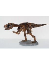 Kleines T-Rex Skelett