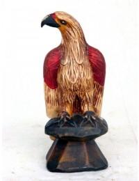 Adler sitzend klein