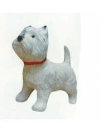 West Highland Terrier mit rotem Halsband