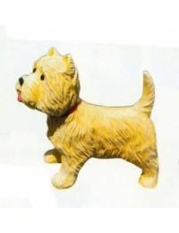 West Highland Terrier mit ausgestreckter Zunge