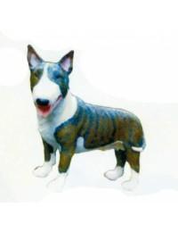 Kampfhund Bullterrier