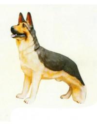Deutscher Schäferhund stehend