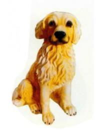 Golden Retriever Welpen sitzend