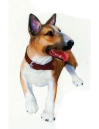 American Pitbull Terrier laufend