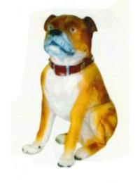 Banter Bulldog sitzend