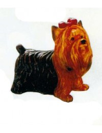 Yorkshire Terrier mit Schleifchen