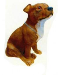 Amerikanischer Pitbull Terrier Kampfhund sitzend