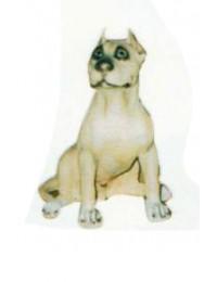 Bullterrier sitzend Kampfhund