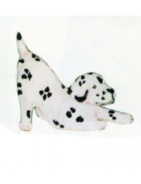 Labrador Welpen spielend
